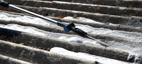 Rengjøring av tak med Nilfisk Roof cleaner